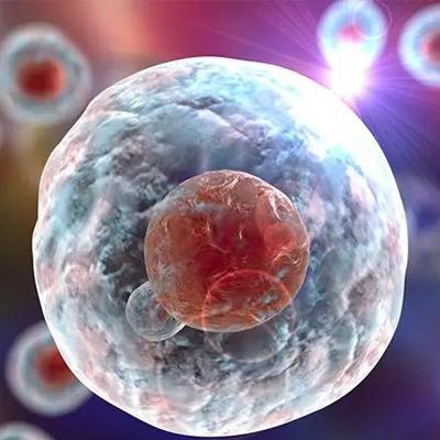 成都干细胞储存